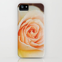 ROSE PHOTOGRAPH iPhone & iPod Case by Allyson Johnson