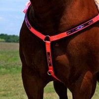 Triple E Southwest Straight Breast Collar - Statelinetack.com