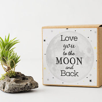Love You To The Moon, Air Planter, Fathers Day Gift for Dad, Best Friend Birthday, Long Distance Gift, Mom Gift, Cute Boyfriend Gift,