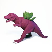 Up-cycled Mulberry Allosaurus Dinosaur Planter - With Succulent Plant