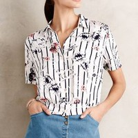 Palisades Buttondown by Tylho Neutral Motif