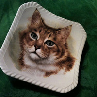 Royal Adderly Bone China Made in England Trinket Collectible Cat plate