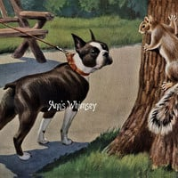 "Antique ART - Boston Terrier and Squirrel  - Vntage Art Restored - Antique Art Print from 1920s - ""Good Afternoon"""