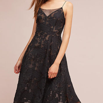 Tracy Reese Mesh & Lace Dress