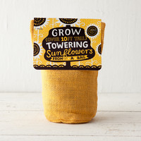 Sunflower Garden Kit