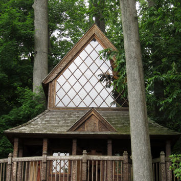 8X10 Treehouse Photo, Canopy Cathedral Treehouse Photography, Landscape Photography, Longwood Gardens, Treehouse Masters, Norwegian Church