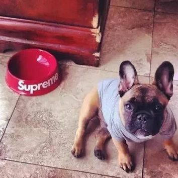 supreme pet dog bowl feeder [199645233164]