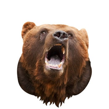 Bear Mount Wall Decal