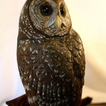 Spotted Owl Wood Sculpture Bird Hand Carved, Carving