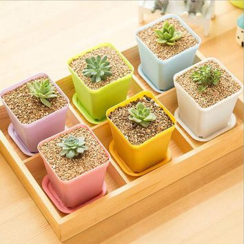 5pcs/set Gardening Mini Plastic Flower Pots+plastic tray Vase Square Flower Bonsai Planter Nursery pots 5 color garden supplies