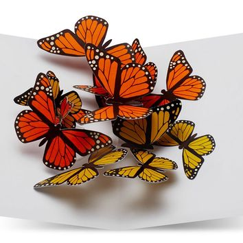 Fluttering Butterflies Pop-Up Note Cards Set of 6