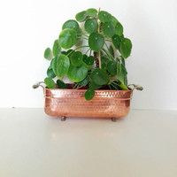 Antique French, succulent planter, Hammered Copper, vintage copper, copper home decor, antique copper, indoor planter, planter pot, planter