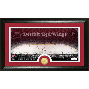 Detroit Red Wings Bronze Coin Panoramic Photo Mint