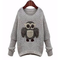 Stylish  Owl Oversize Women Fall Fashion Pullover