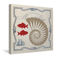 Pacific Nautilus Canvas Wall Art