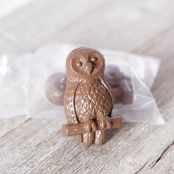 Brown Owl Knobs, Metal Knobs, Unique Knobs, Funky Cabinet Knobs for Woodland Animal Nursery or Owl Nursery
