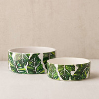 83 Oranges For Deny Leafy Nature Pet Bowl | Urban Outfitters