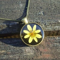 Real flower necklace - Yellow lesser celandine flower - Pressed flower pendant -Botanical jewellery -Nature inspired  -Round bronze pendant