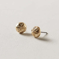 Anthropologie - Sand Dollar Posts