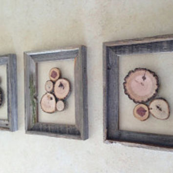 Wood Slice Art - 'Wooded Cluster' - Nature Wall Hanging - Rustic Barn Wood Frames w/ Suspended Wood Slices - Rustic Wooden Art