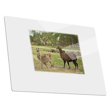 Standing Llamas Metal Panel Wall Art Landscape - Choose Size by TooLoud