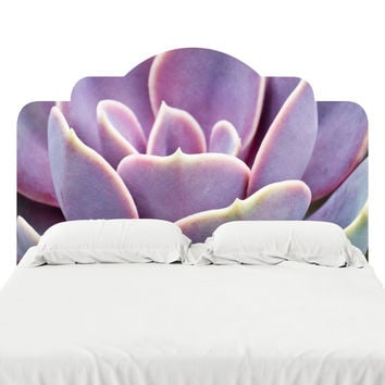 Sunset Succulent Headboard Decal
