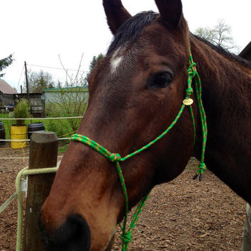 Rope Horse Halter. Handtied. Green, yellow, and hot pink
