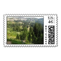 View From A Hike Postage Stamp