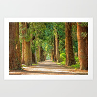 Nature/trees Art Print by Knm Designs