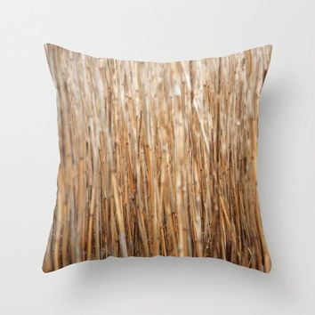 Throw Pillow Cover - Soft Golden Reeds 16 x 16, 18 x 18