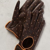 Dotty Driving Gloves by Anthropologie Brown