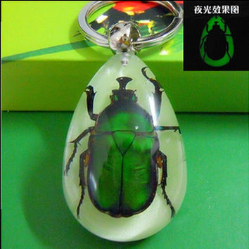 2016 Fashion Real Insect green Emerald Scarab Key chain Key ring key buckle Resin 45*31*15.5mm birthday souvenir gift