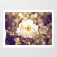 My One and Only Art Print by Dena Brender Photography