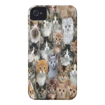 Fluffy Kittens Case-Mate iPhone 4 Cases from Zazzle.com