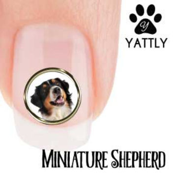 Miniature American Shepherd Portrait Nail Art ( NOW 50% MORE FREE)