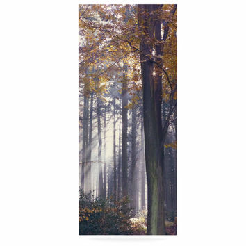 "Alison Coxon ""Autumn Sunbeams"" Trees Photography Luxe Rectangle Panel"