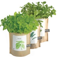 Garden-in-a-Bag Organic Herbs