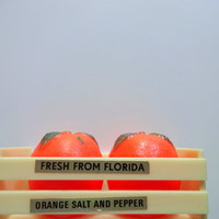 Vintage Florida Orange Salt and Pepper Shakers 1960s
