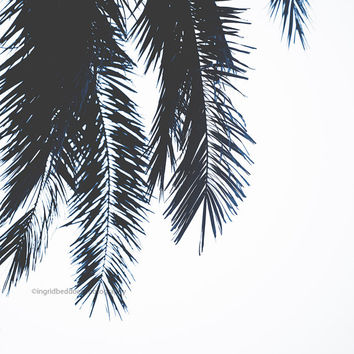 Palm tree abstract print, tropical decor, Palm tree leaves wall art, white decor, modern minimal photo, square print, wall decor, home decor