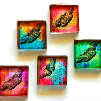 Glass Magnets - Butterflies - Necklace Cabochon Supplies - Set of 5 - 1 Inch Glass Squares with or without magnets