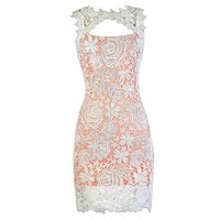 Lily Boutique Peach and Ivory Lace Dress, Peach and Ivory Lace Pencil Dress, Peach Fitted Lace Dress, Peach and Ivory Lace Party Dress, Peach and Ivory Lace Cocktail Dress Lily Boutique