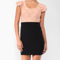 Lace Contrast Dress