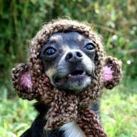 Monkey Pup Hat by talk2thetrees on Etsy