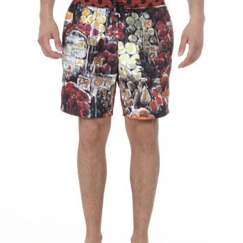 Dolce & Gabbana mens swimming trunks M60671 OMS81 X0872