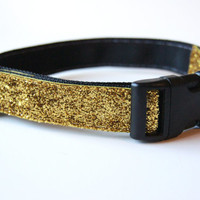 Gold Sparkle Dog Collar Adjustable Sizes (M, L, XL)