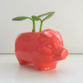 Pig Planter Ceramic 60s Mini Desk Pig Planter Vintage Design in Coral Pink Succulent Planter