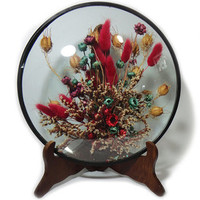 Vintage Dried Flowers Framed Dried Botanicals Convex Glass Frame Domed Round Glass Wood Easel Plate Holder Easel Stand Picture Easel Display