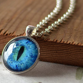 Animal Eye Necklace, Third Eye Jewelry, Evil Eye Charm, Eyeball Pendant (938)