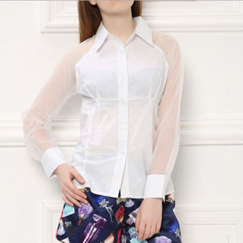 White Buttoned Long Sleeves Lapel Sheer Blouse
