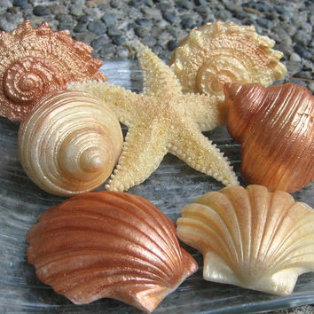 Decorative Seashell Soaps in Gold and Copper Shimmer